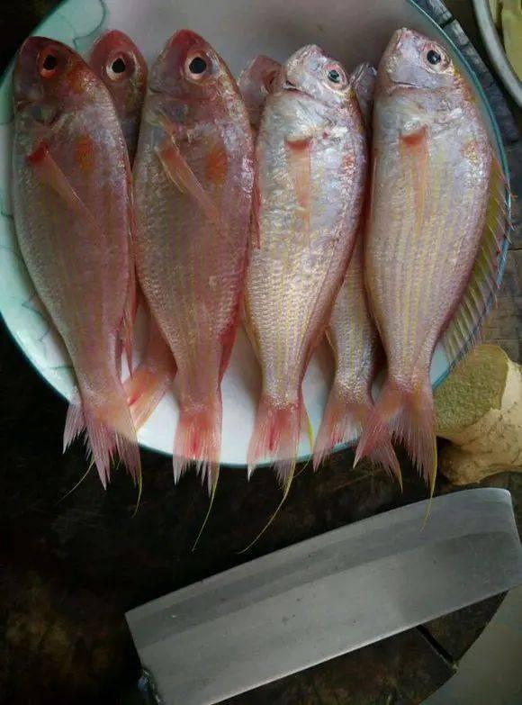 这5种鱼尽量少吃,或含脏东西,不妨来看一下